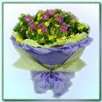 AB010511003 我紫有妳